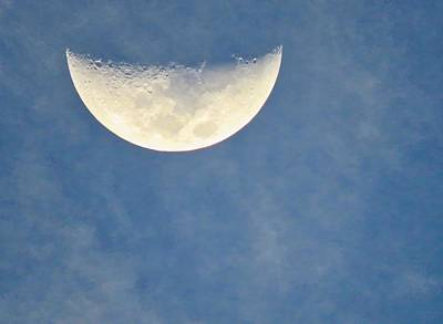 Photograph - Cancer Half Moon by Judy Kennedy