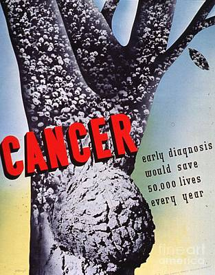 Poster Painting - Cancer by MotionAge Designs