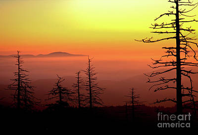 Print featuring the photograph Candy Corn Sunrise by Douglas Stucky
