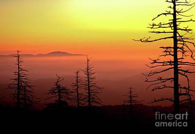 Photograph - Candy Corn Sunrise by Douglas Stucky