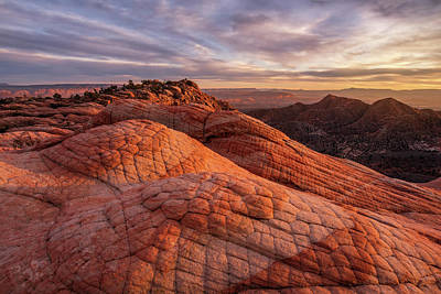 Photograph - Sleeping Dragon by Dustin LeFevre