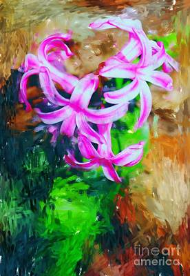 Photograph - Candy Striped Hyacinth  by David Lane