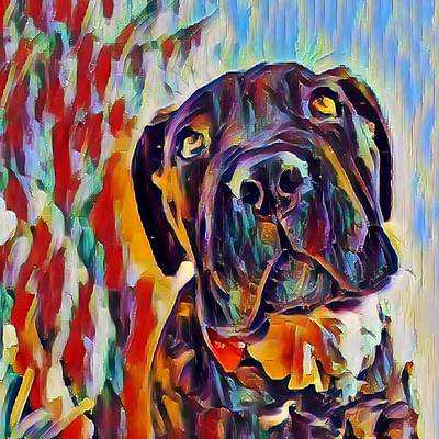 Just Desserts Rights Managed Images - Cane Corso Puppy Royalty-Free Image by Bonny Puckett