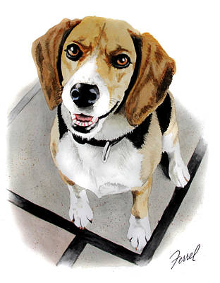 Canine Cutie Art Print by Ferrel Cordle