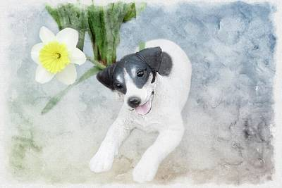 Digital Art - Canine Statue And Daffodil Flower. by Rusty R Smith