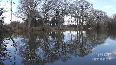 Photograph - Cann Lane Pool by John Williams