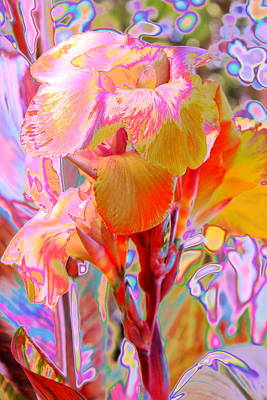 Canna Photograph - Canna Abstract 3 by M Diane Bonaparte