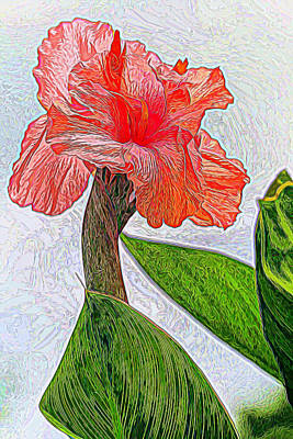 Canna Photograph - Canna Lily Art by Geraldine Scull