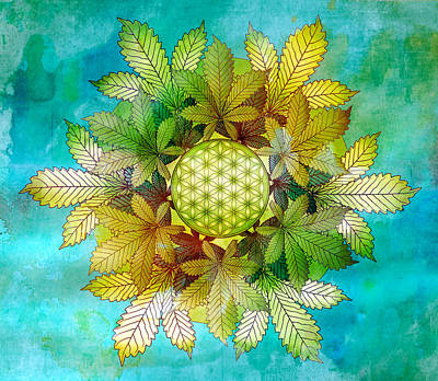 Digital Art - Cannabis Leaf Mandala by Serena King