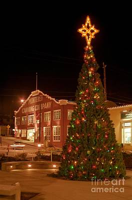 Photograph - Cannery Row Christmas Tree by James B Toy