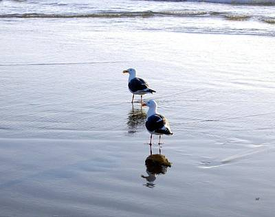 Photograph - Cannon Beach Buddies by Will Borden