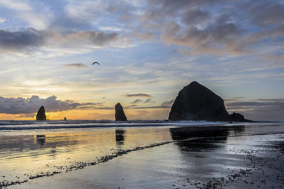 Photograph - Cannon Beach by Chuck Jason