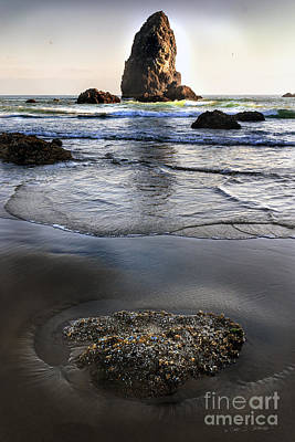 Photograph - Cannon Beach by Craig J Satterlee