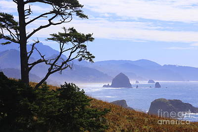 Photograph - Cannon Beach View by Marty Fancy