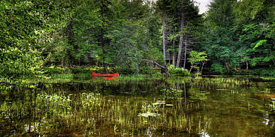 Photograph - Canoe Among The Reeds by David Patterson