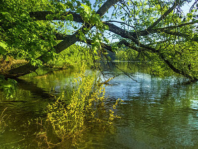 Photograph - Canoeing In Peaceful Waters by Debra and Dave Vanderlaan