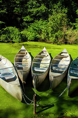 Photograph - Canoes by Eleanor Caputo