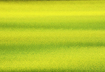 Photograph - Canola 10x by Doug Davidson