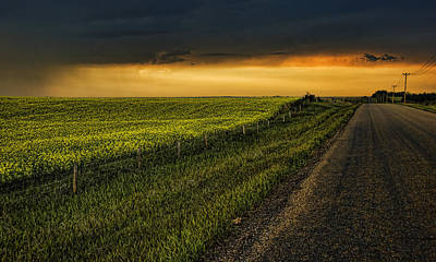 Photograph - Canola And The Road Ahead by Wayne Sherriff