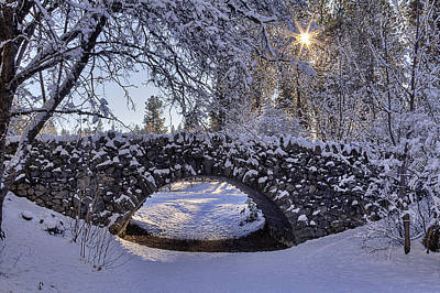 Spokane Photograph - Cannon Hill Park Winter by Mark Kiver