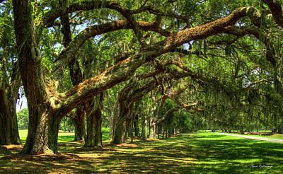 Photograph - Canopy Of Shade Ave Of Oaks Sea Island Georgia Art by Reid Callaway