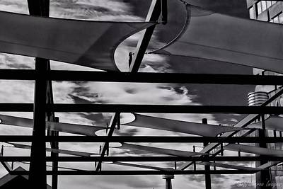 Photograph - Canopy by Wallaroo Images