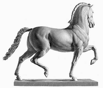 Canova: Horse Art Print by Granger