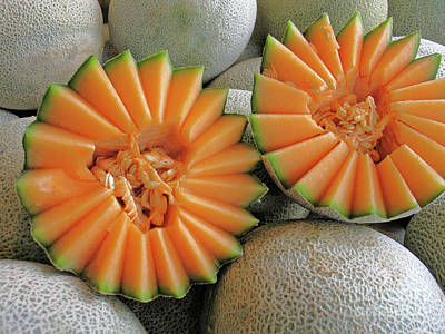 Photograph - Cantaloupe Halves by Ann Horn