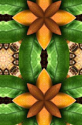 Digital Art - Cantaloupe Slices Fruit Art by Sheila Mcdonald
