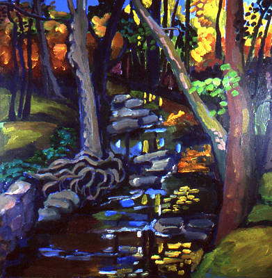 Canterbury Road Runoff Stream  Art Print
