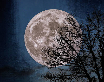 Photograph - Canvas Moon by Dennis Bucklin