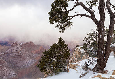 Photograph - Canyon And The Covering Fog by Jonathan Nguyen
