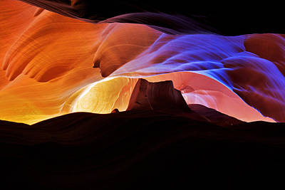 Print featuring the photograph Canyon Antelope by Evgeny Vasenev
