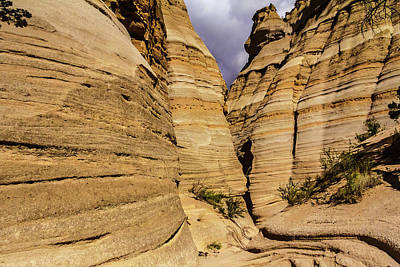 Photograph - Canyon At Tent Rocks by Steven Bateson