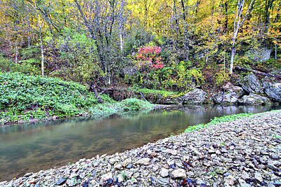 Photograph - Canyon Autumn by Bonfire Photography