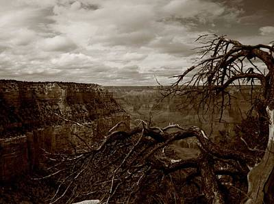 Photograph - Canyon Black And White by Christopher Kirby