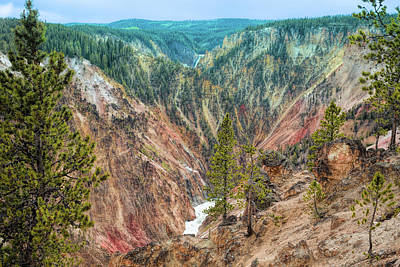 Photograph - Canyon Colors by John M Bailey