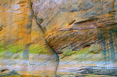 Photograph - Canyon Colors by Todd Breitling