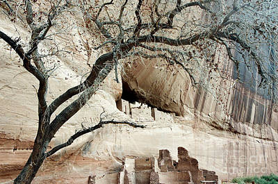 Photograph - Canyon De Chelly by Frank Townsley