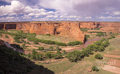 Photograph - Canyon Dechelly by Louise Magno