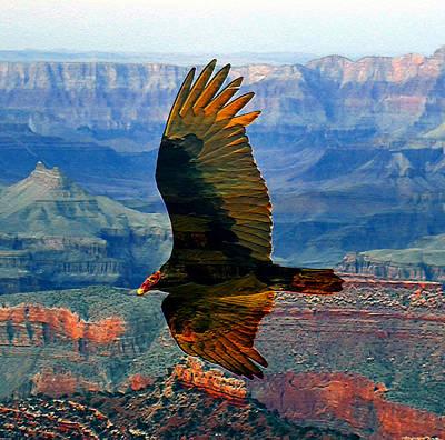 Grand Canyon Mixed Media - Canyon Flight by David Lee Thompson