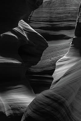 Photograph - Canyon Love B/w by Chuck Jason