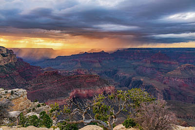 Photograph - Canyon Monsoon by David Cote
