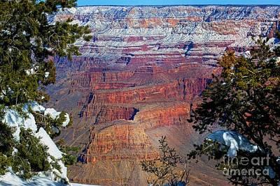 Photograph - Canyon Mystique by Jenny Revitz Soper