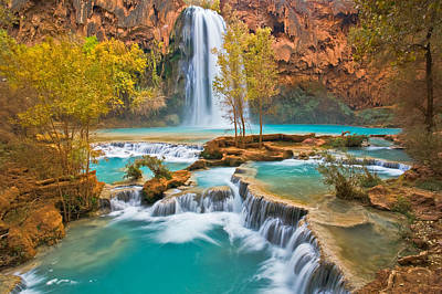 Havasupai Photograph - Canyon Oasis by Guy Schmickle