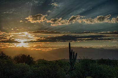 Photograph - Canyon Ranch Dawn by Dan McManus