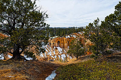 Photograph - Canyon View by Christopher Holmes