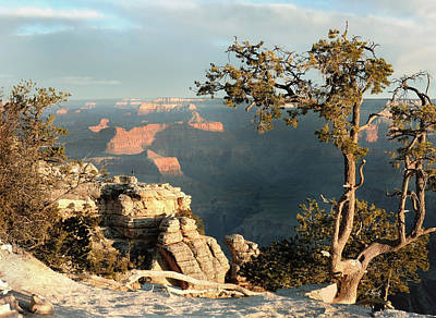 Photograph - Canyon View by Gordon Beck