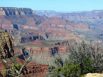 Photograph - Canyon View by Laurel Powell