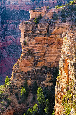 Photograph - Canyon Wall by Anthony Bonafede